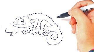 How to draw a Chameleon Step by Step | Chameleon Drawing Lesson