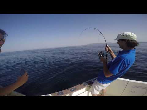 Grouper fishing in the Strait of Gibraltar - TomsCatch.com