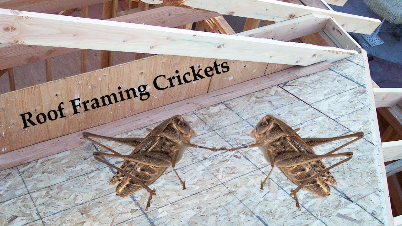 How To Build A Roof Drainage Cricket – Home Building Ideas - YouTube