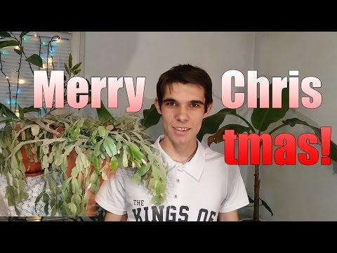 Craciun fericit! Planta Craciunita / Merry Christmas! Schlumbergera plant