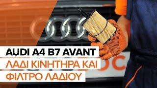 Τοποθέτησης Φίλτρο λαδιού AUDI A4 Avant (8ED, B7): δωρεάν βίντεο