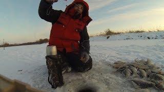 Крупный карась зимой |ВОТ ЭТО ПОШЛА ЖАРА! Здоровенные лапти на мормышку | Зимняя рыбалка на карася