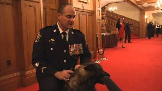 Const. Gibson And K9 Teak Awarded Meritorious Service