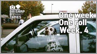 brisnapTV One week One roll  Leica minilux  Agfa vista 400