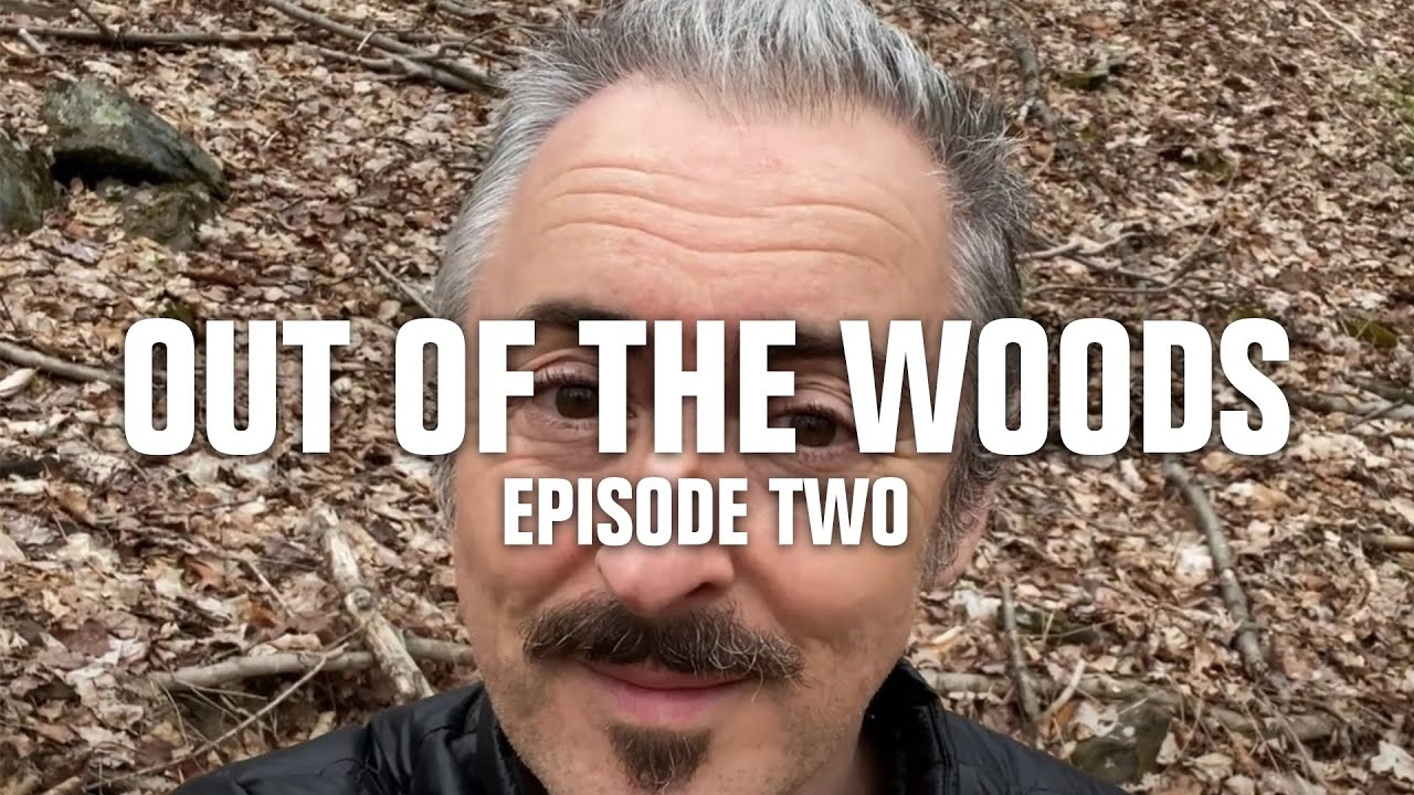 Out of the Woods - Episode 2/3 | Scenes for Survival