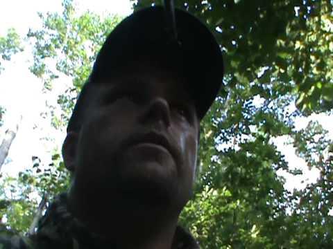 Hog Hunt NE Oklahoma - Public Land
