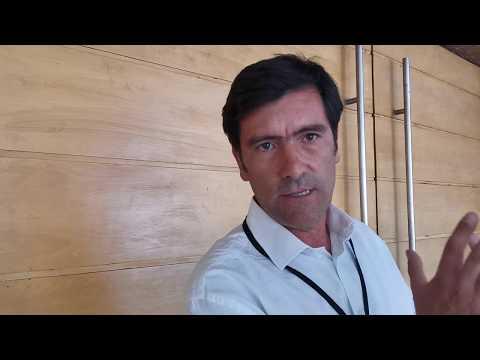 Francisco Bardi, Consultor Senior GEM, Label Summit 2020