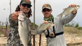 The REALITY of Hunting and Fishing With LAKE FORK GUY!! (Catch Clean Cook)