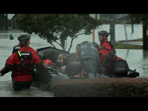 Crews Rescue People, Pets Swim to Safety