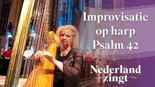 Nederland Zingt: Psalm 42 - Improvisatie op harp