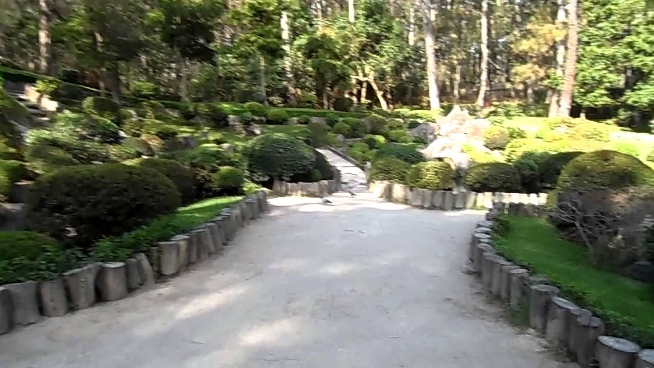 Bosque colomos jardin japones y ardillas youtube for Jardin japones