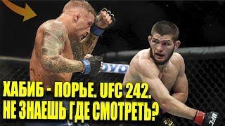 ХАБИБ НУРМАГОМЕДОВ - ДАСТИН ПОРЬЕ. ГДЕ СМОТРЕТЬ UFC 242? ПРЯМОЙ ЭФИР. ТУХУГОВ. МАХАЧЕВ.