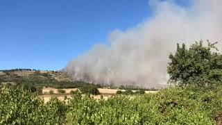 Incendio Bosco di Acquatetta 09/07/20