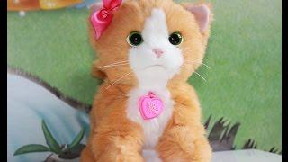 Игривый котенок Дэйзи  FurReal Friends от Hasbro