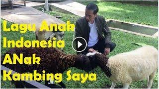 Lagu Anak Indonesia Anak Kambing Saya Caca Marica