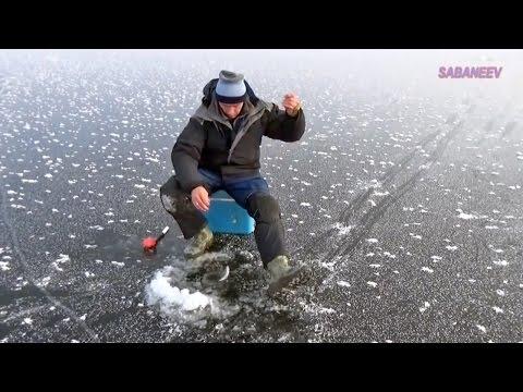 лучшая прикормка для рыбы видео