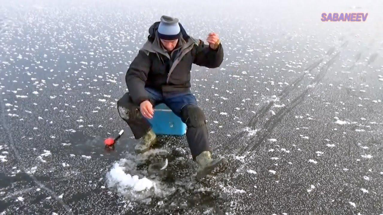 рыбалка прикормка на хищную рыбу