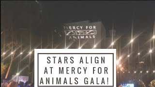 The Stars Align at Mercy for Animals Gala!