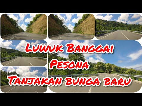 Luwuk Kabupaten Banggai, Jalan Baru Tanjakan Bunga