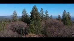 Alta Sierra, California
