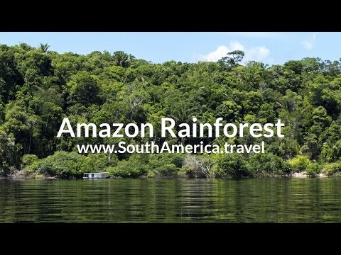 Amazon Rainforest Travel Seminar