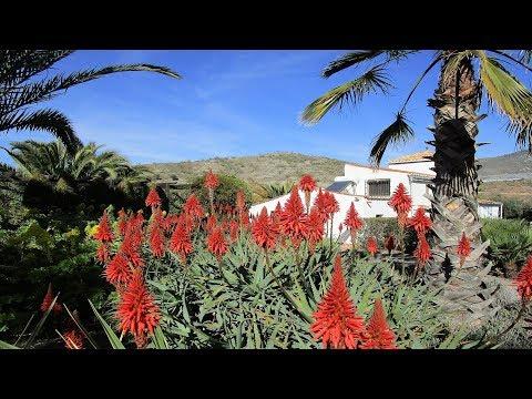 Velez de Benaudalla. Beautfully Presented Country Cortijo. REF0134