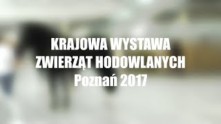 Krajowa Wystawa Zwierząt Hodowlanych 2017