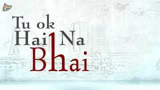 Tu Ok Hai Na Bhai New Friendship Whatsapp Song