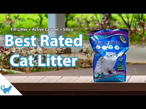 Best Rated Cat Litter: Fifi Litter With Active Carbon And Silica - Cat Litter Review