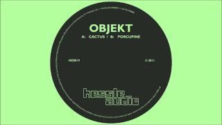 Objekt - Cactus