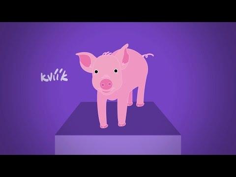 Ako robia zvieratká