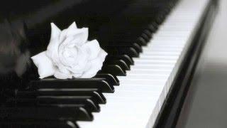 pianoroll - Martin Eyerer, Benno Blome