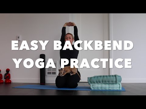 20 minute easy backbend yoga practice  youtube