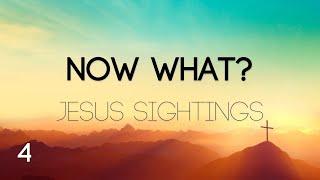 Now What? - Jesus Sightings