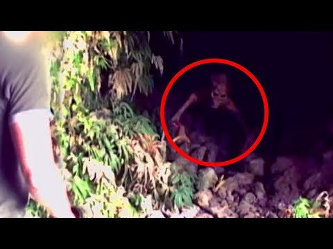 Thumbnail: 10 Mysterious Creatures Caught on Camera