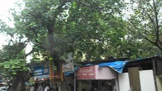 Sanghvi Exotica