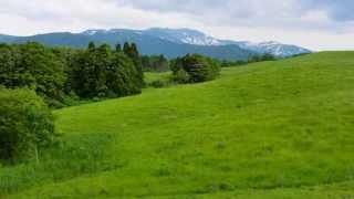 杉並児童合唱団 - おお牧場はみどり
