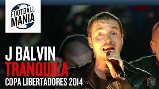 J Balvin - Tranquila - Copa Libertadores 2014 Final - Opening Show