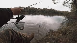 Как ловлю леща на фидер Река Десна