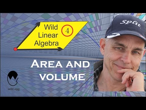 Wild Linear Algebra 4: Area and volume
