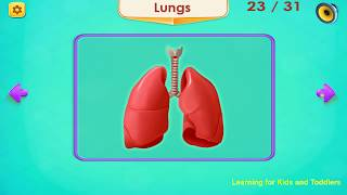 Human Body Parts - Preschool Kids Learning [Ages 8 & Under] - Android