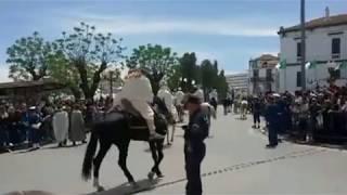 مهرجان  إختتام تظاهرة قسنطينة عاصمة الثقافة العربية 2016