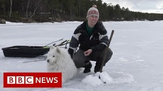 [3.84 MB] The women fighting for Lapland - BBC News