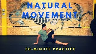 30-Minute Natural Movement Class: Circuit & Freestyle