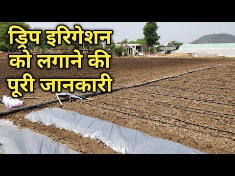 Drip Irrigation system के बारे में पूरी जानकारी।💧टपक सिंचाई।Fitting, Price, Mantanaince