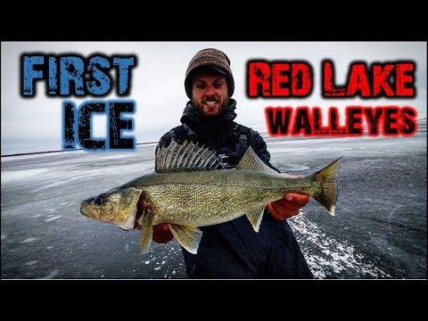 First Ice Walleye Fishing - Red Lake, Minnesota