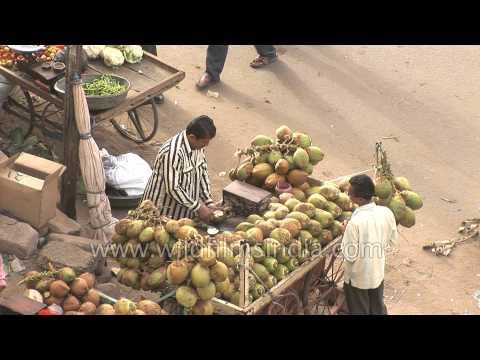 Man Sells Coconut Water At A Market In Gujarat