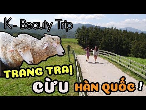 Ep. 03 | Đi Trang Trại Cừu Hàn Quốc ! | K-Beauty Trip