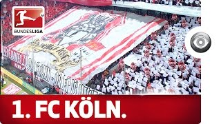 The Home of 1. FC Köln - A Quintessential Bundesliga Atmosphere