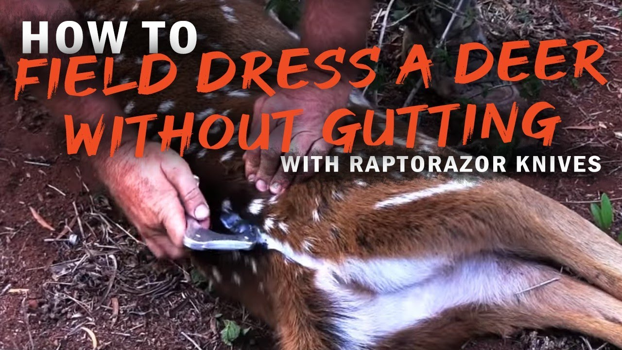 How To Field Dress A Deer Without Gutting By Raptorazor